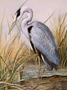 Great Blue Heron Paint by Diamonds