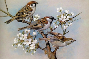 House Sparrows Paint by Diamonds