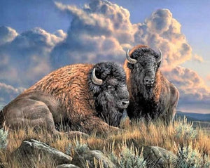 Lone Bison Paint by Diamonds