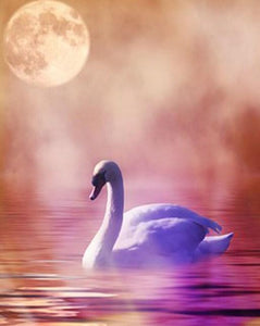 Lonely Swan Paint by Diamonds