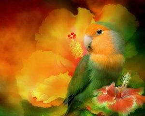Love Bird Diamond Painting