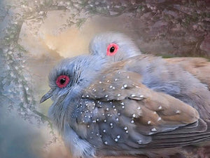 Lovely Dove Pair Paint by Diamonds
