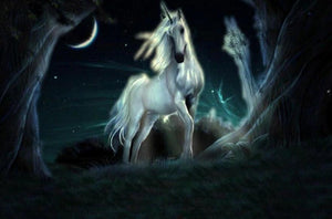 Night Sky & Stunning Unicorn Diamond Painting