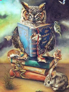 Owl Reading Book Paint by Diamonds