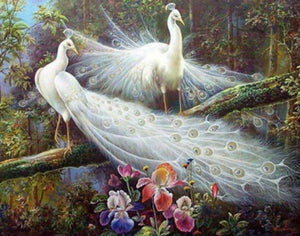 Pair of White Peacocks Diamond Painting