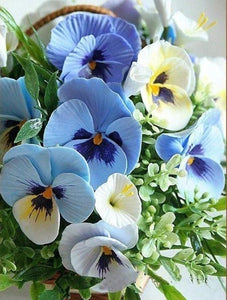 Pansy Flowers Paint by Diamonds