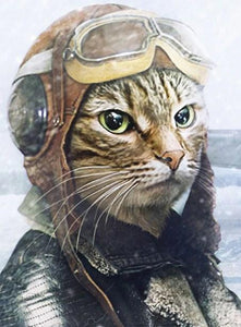 Pilot Cat Paint by Diamonds