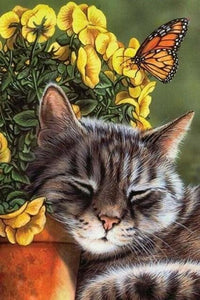 Sleeping Cat - Diamond Painting Kit