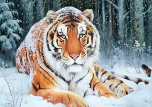 Stunning Tiger Under Snowfall Diamond Painting