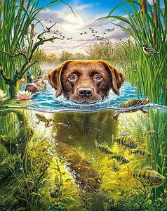 Swimmer Dog Diamond Painting Kit