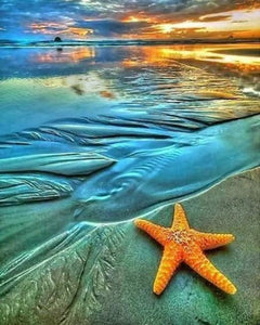 The Starfish on the Beach Paint by Diamonds