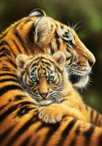 Tiger & Cub Hugging Paint by Diamonds