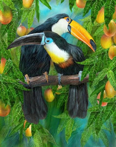 Toucans Pair Diamond Painting Kit