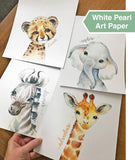 Confetti Fox Safari Animals Nursery Pictures Wall Decor - 8x10 Unframed Set of 4 Art Prints - Leopard Elephant Zebra Giraffe - Baby Boy Girl Zoo Jungle Watercolor Artwork