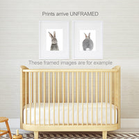 Designs by Maria Inc. Baby Nursery Wall Decor Art - Set of 2 (UNFRAMED) Wall Artwork 8x10 Baby Bunny Front and Back Photographic Print