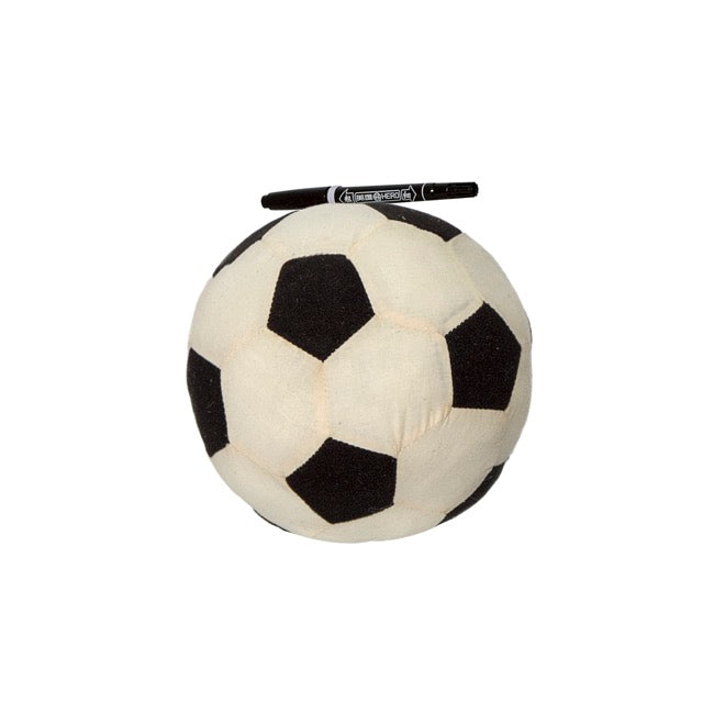 Signature Soccer Ball with Pen (18cmD)