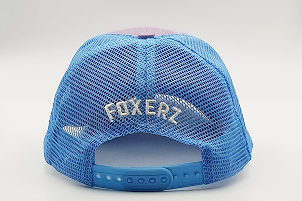 foxerz cap Gray/SkyBlue So_Moody rearward view