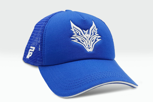 The Fox Logo blue cap other sidelong view