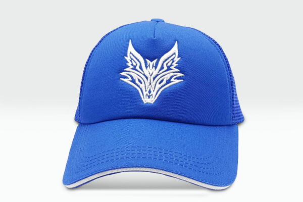 The Fox Logo blue cap frontal view