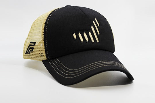 The UAE nation brand black/gold cap other sidelong view