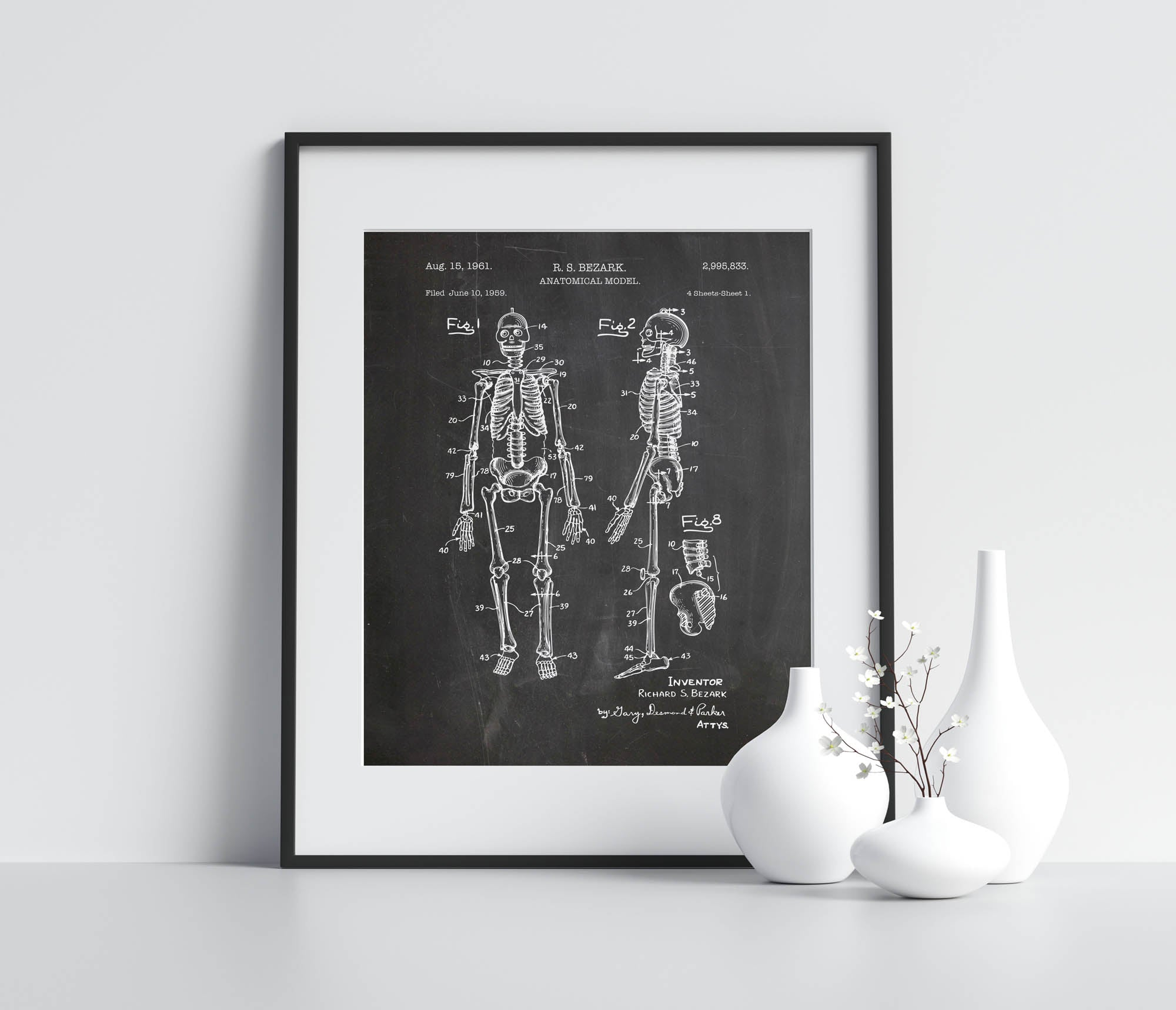 Anatomical Model Poster