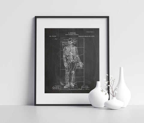 Anatomical Education Puzzle