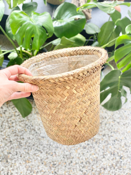 "6"" Seagrass Basket with Plastic Liner (LOCAL DELIVERY / PICKUP ONLY)"