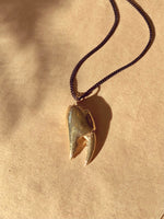 MADE IN Jewelry - Large Crab Claw Necklace