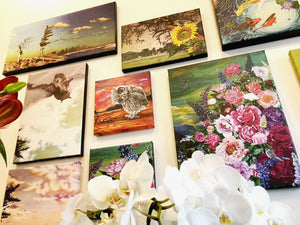 colourful paintings hanging on wall