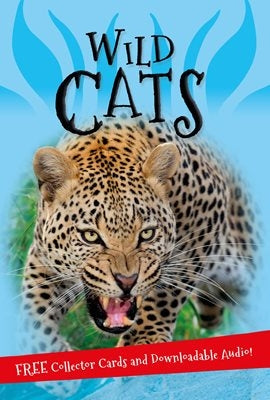 Its All About - Wild Cats