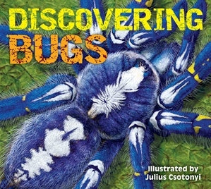 Discovering Bugs