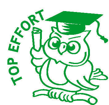 Top Effort Owl - Merit Stamp