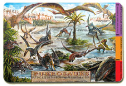 Pterosaurs Flying Dinosaurs Placemat