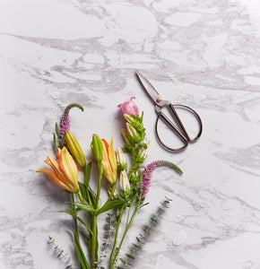 Should I paint my countertops?