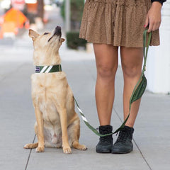 Awesome Olive - Cargo Leash 4ft