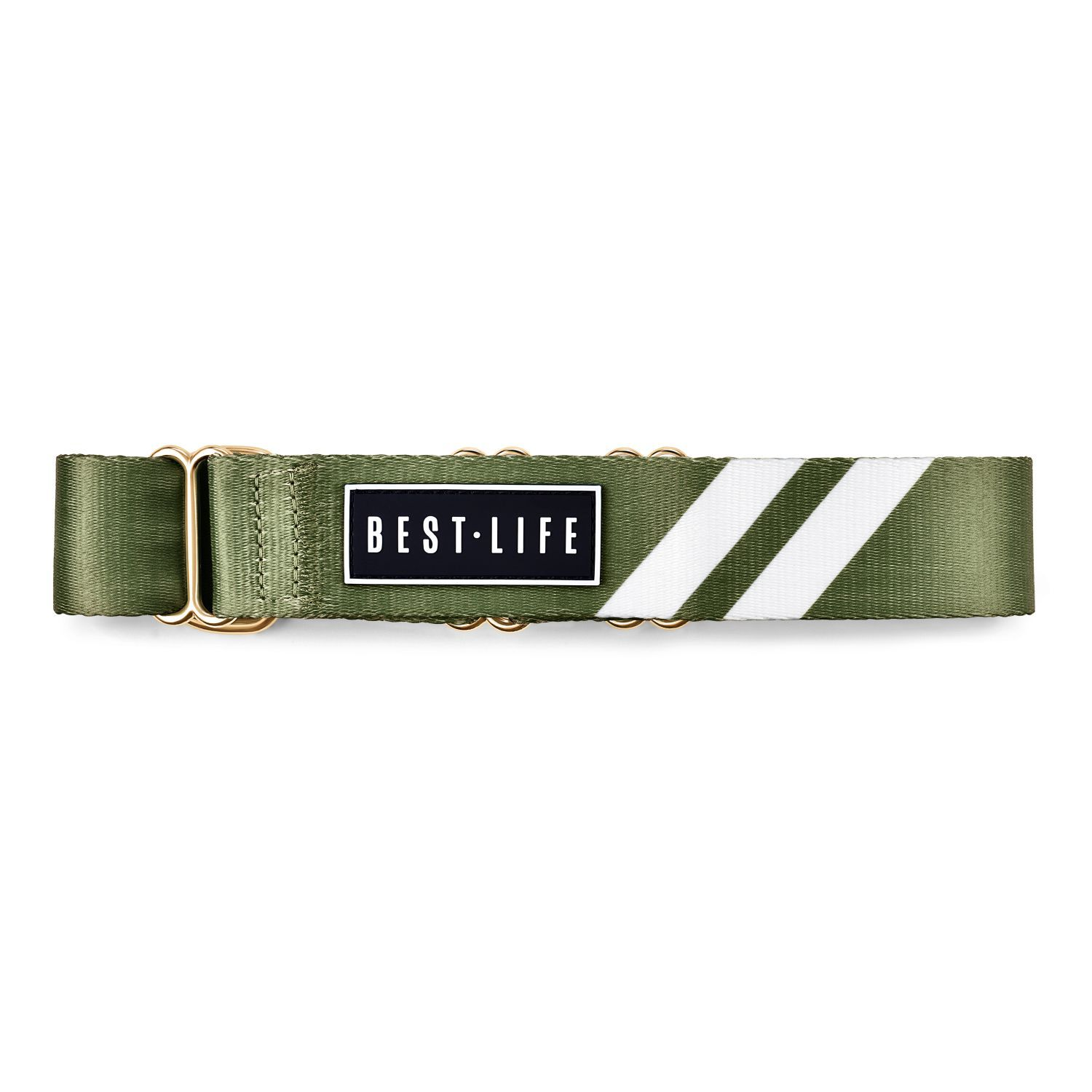 Awesome Olive - Martingale Collar collar bestlifeleashes