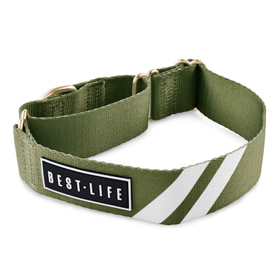 "Awesome Olive - Martingale Collar collar bestlifeleashes Small 11""-15"""