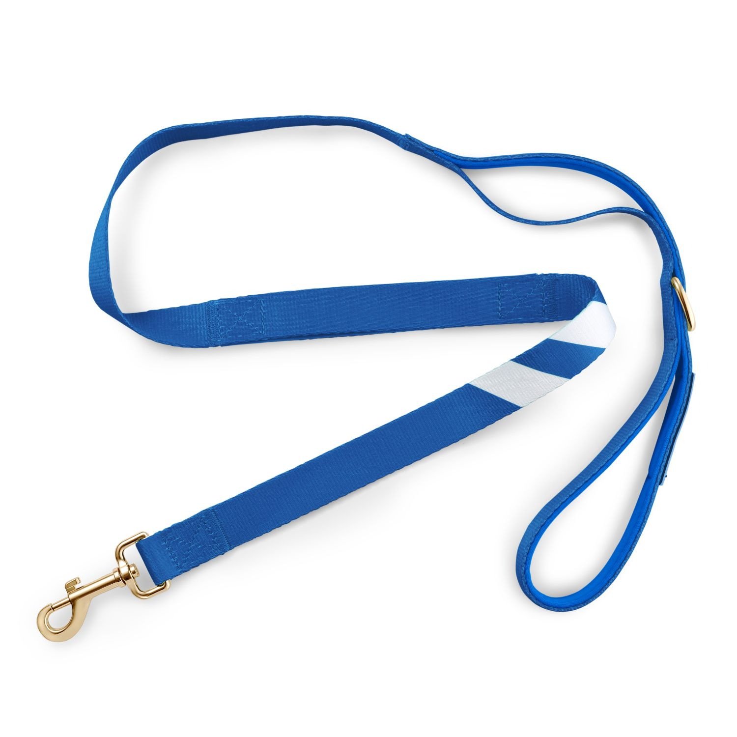 Loyal Blue - City Walker Leash leash bestlifeleashes