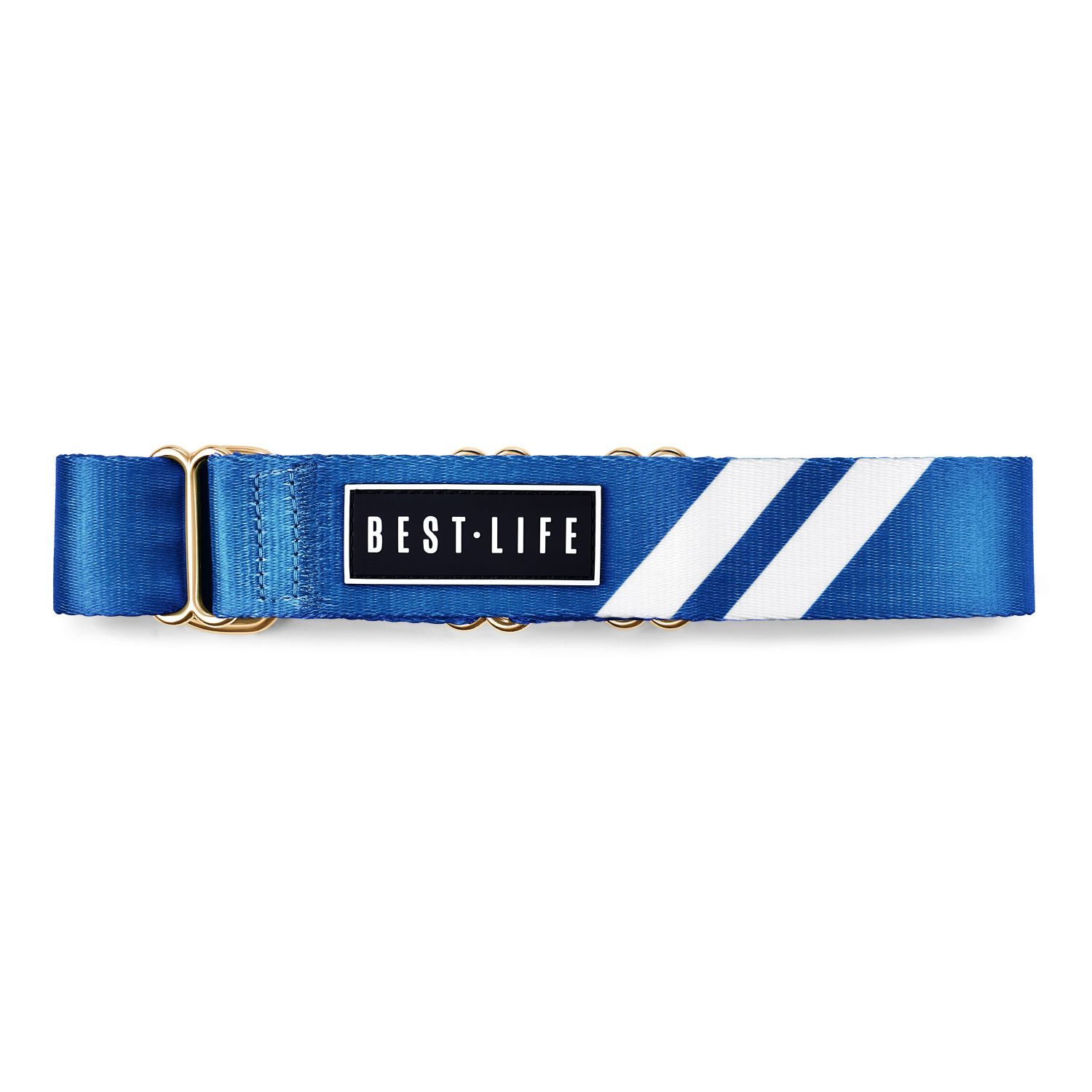 Loyal Blue - Martingale Collar collar bestlifeleashes