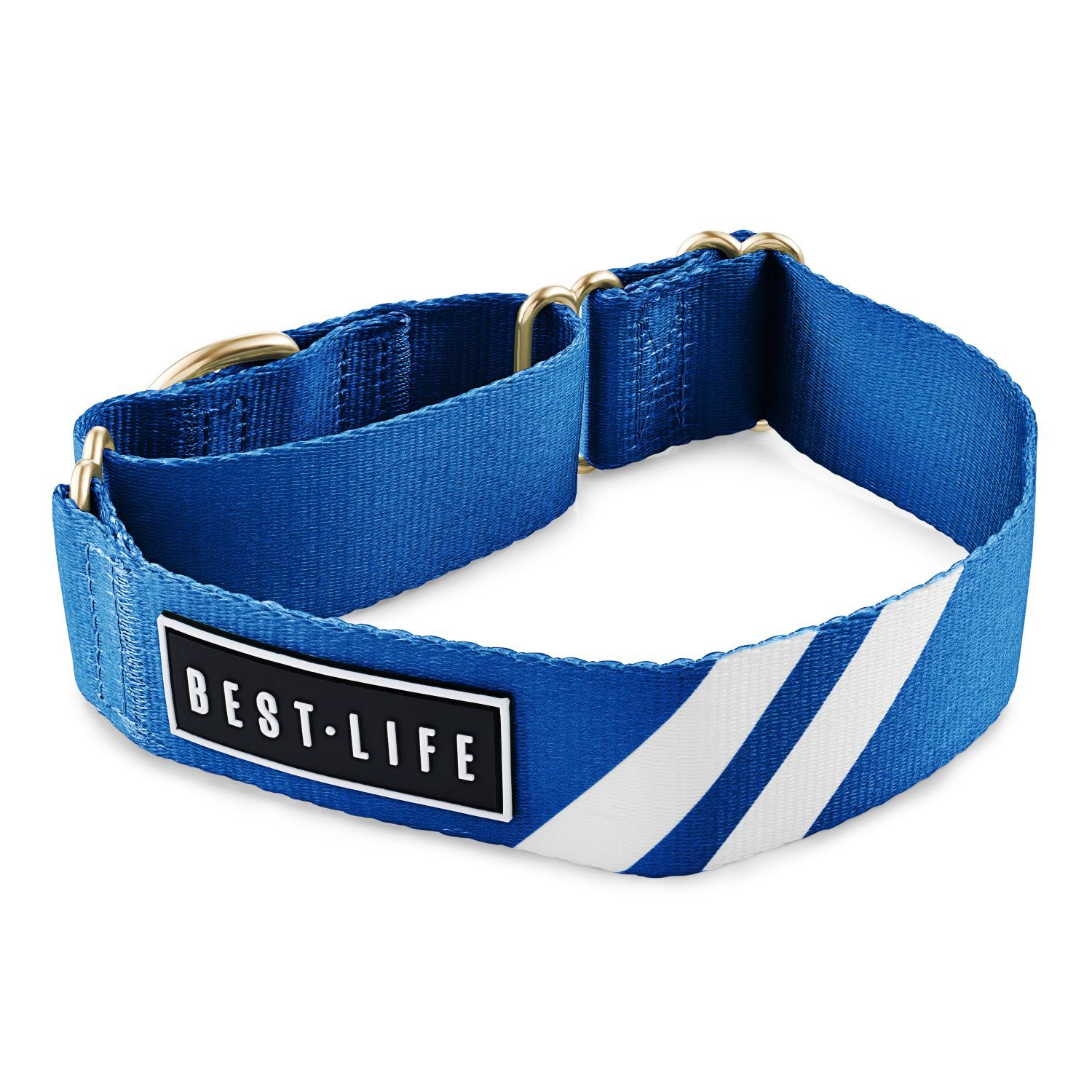 Loyal Blue - Martingale Collar