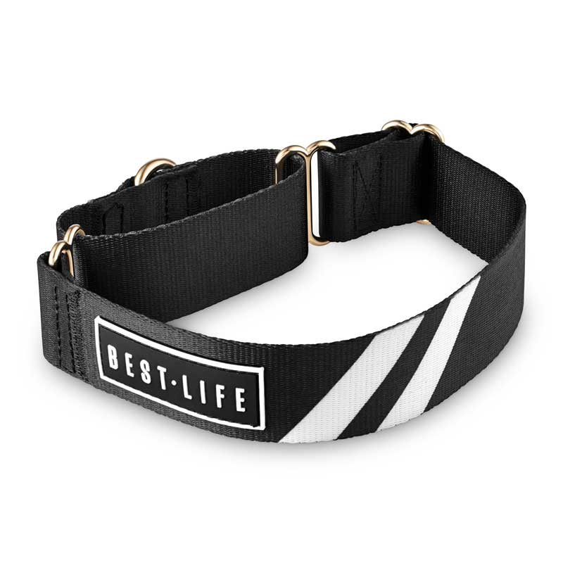 Midnight Black - The Martingale Collar collar bestlifeleashes Small 11