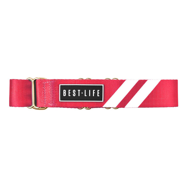 Rad Red - Martingale Collar