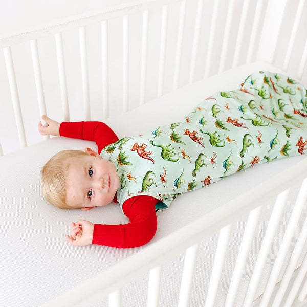 Buddy Sleeveless Sleep Bag 2.5 Tog