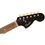 Fender Limited Edition Mahogany Blacktop Stratocaster, Pau Ferro Fingerboard, Black with Gold Hardware - CBN Music Warehouse