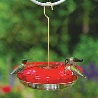 Hummzinger Mini High View 8oz Hummingbird Feeder by Aspects
