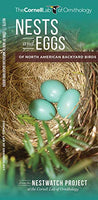 Nests and Eggs of North American Birds Foldout Guide