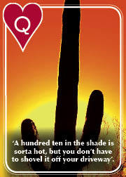 All About Arizona Collectable Playing Cards