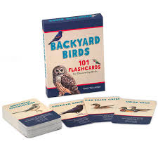 Backyard Birds 101 Flashcards for Discovering Birds