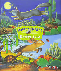 Desert Night Desert Day