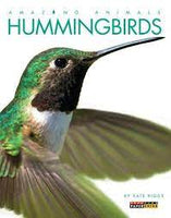 Amazing Animals - Hummingbirds